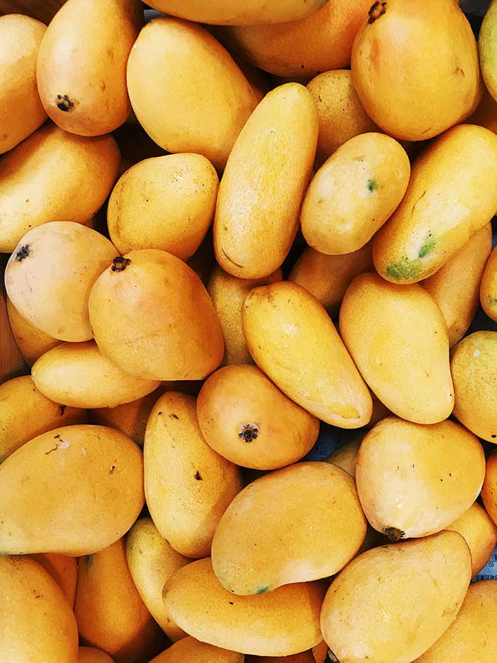 Indian mango ban